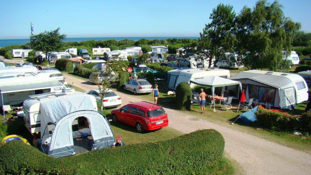 Pitches - Campsite Blank-Eck